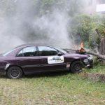 Verkehrsunfall Auto gegen Baum